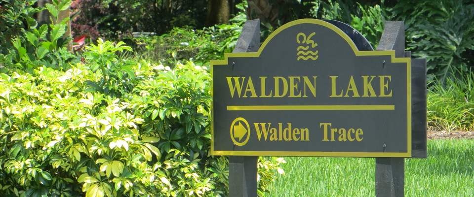 Walden Trace